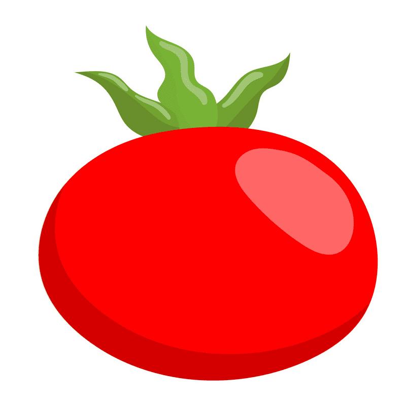 Tomato clipart 10