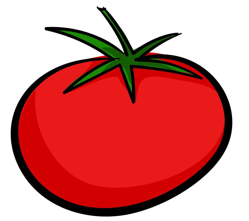 Tomato clipart 4