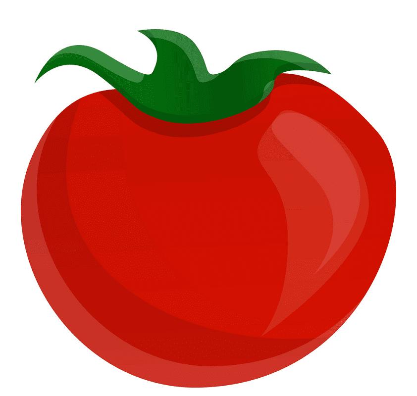 Tomato clipart 5