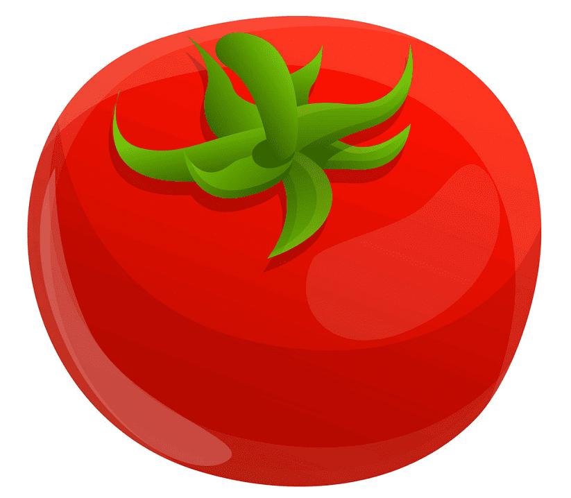 Tomato clipart 8