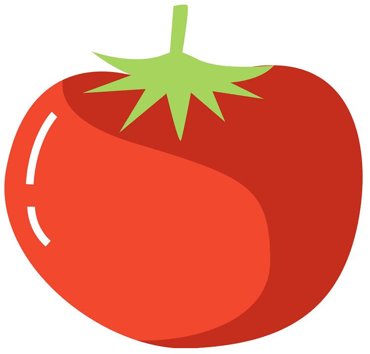 Tomato clipart free image