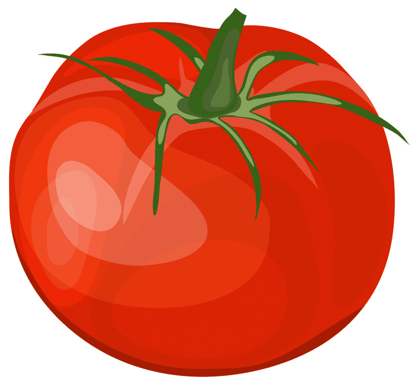 Tomato clipart free images