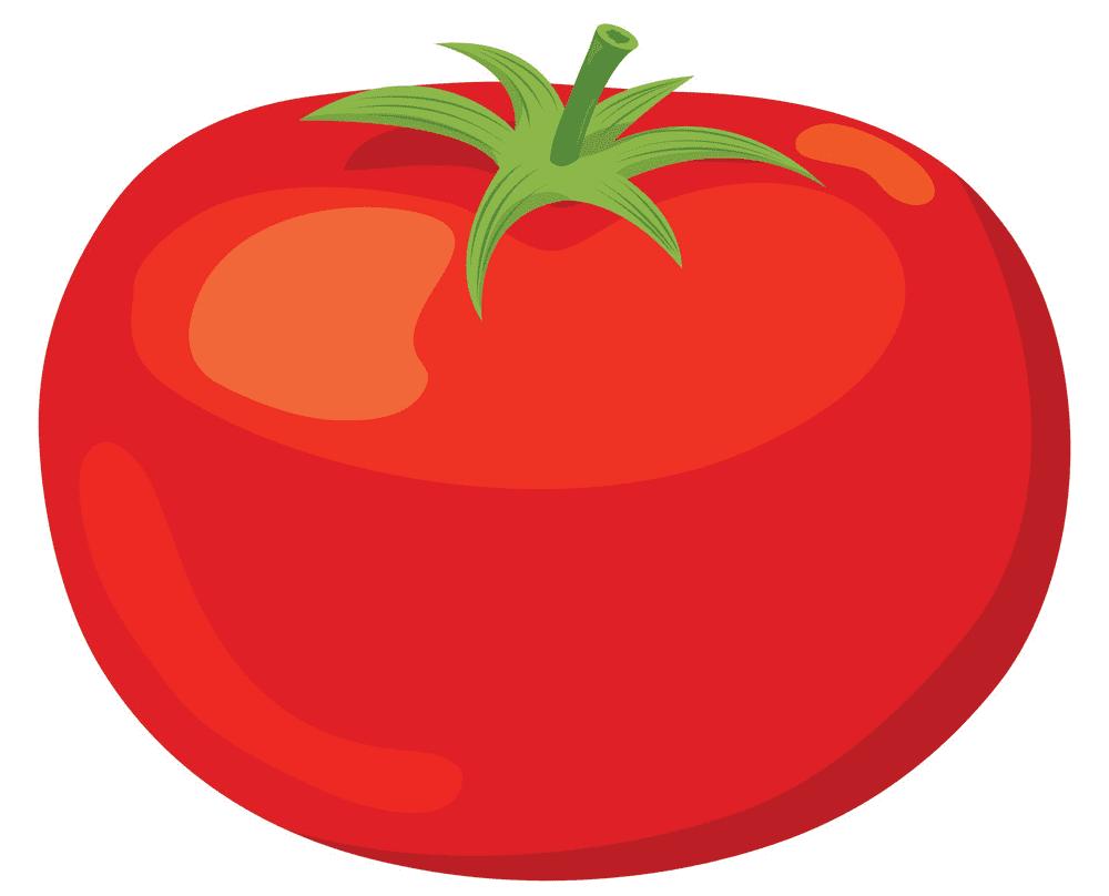 Tomato clipart image