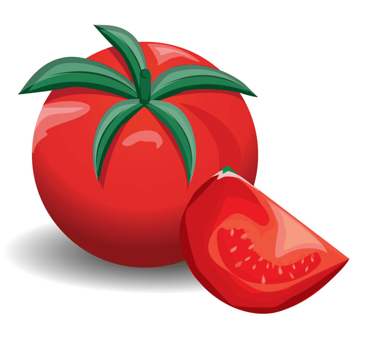 Tomato clipart images