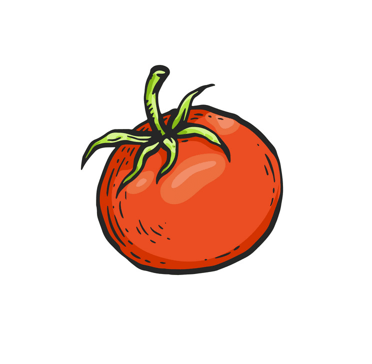 Tomato clipart png 2