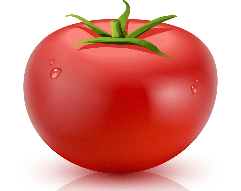 Tomato clipart png download