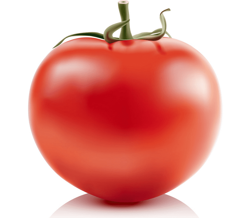 Tomato clipart png picture