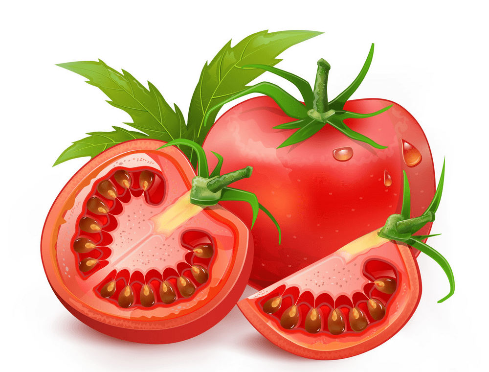 Tomato clipart png
