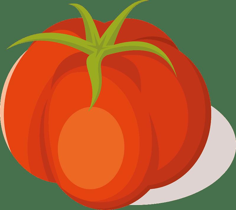 Tomato clipart transparent 1