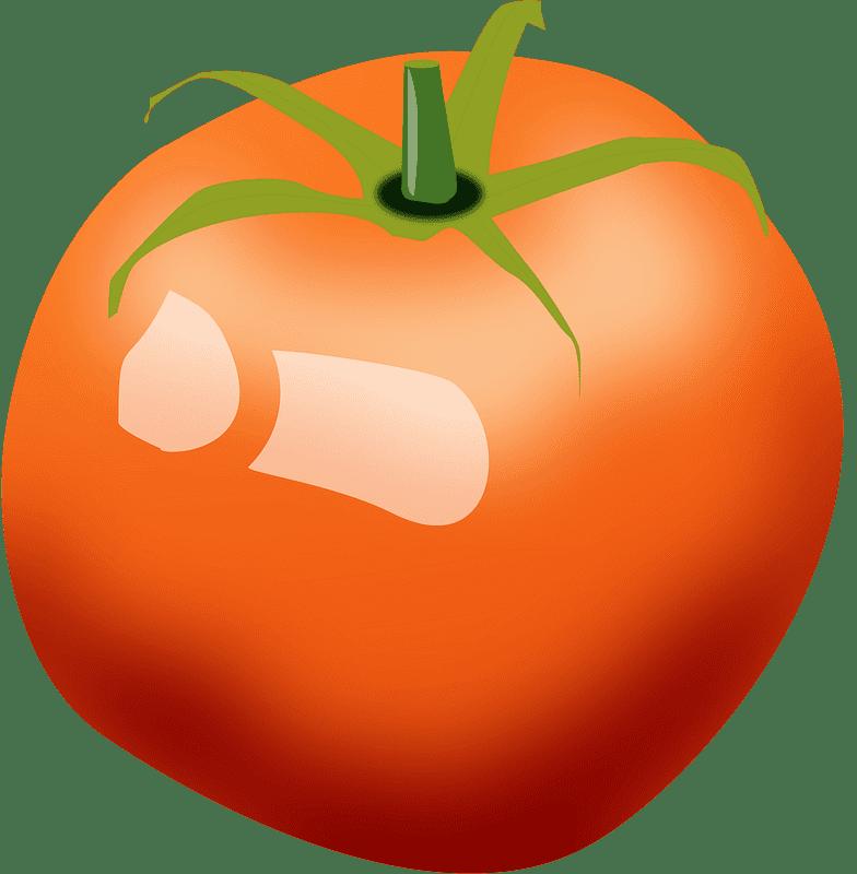 Tomato clipart transparent 4