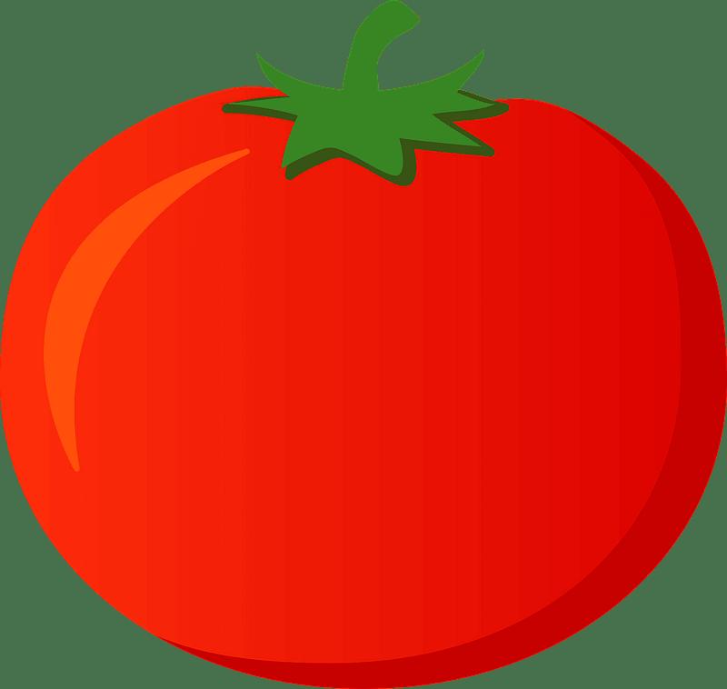Tomato clipart transparent 9