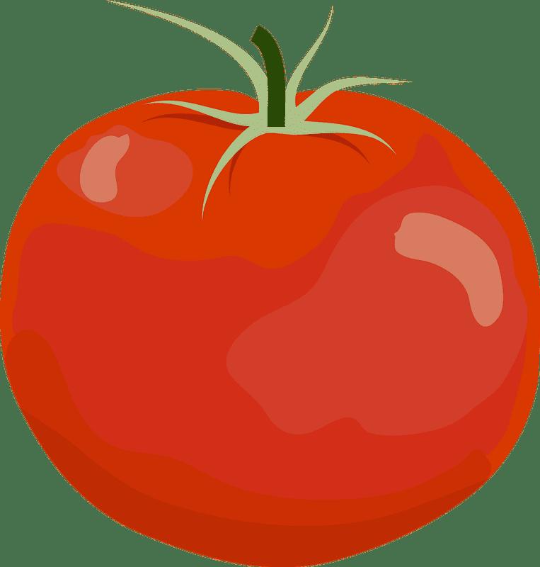 Tomato clipart transparent background 1