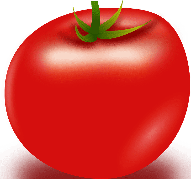 Tomato clipart transparent background 4