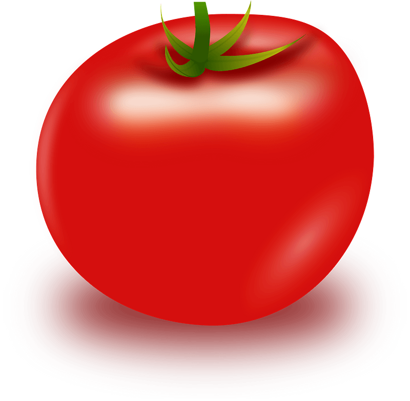 Tomato clipart transparent background