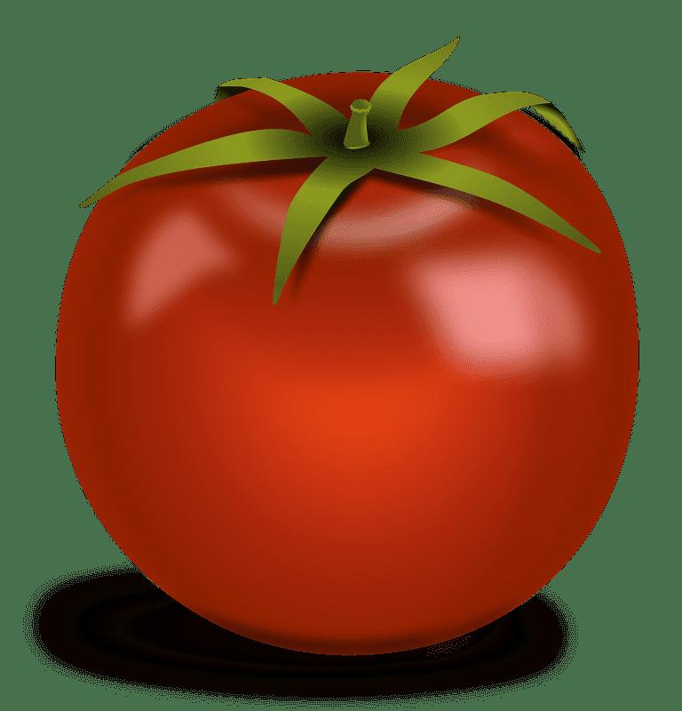 Tomato clipart transparent free