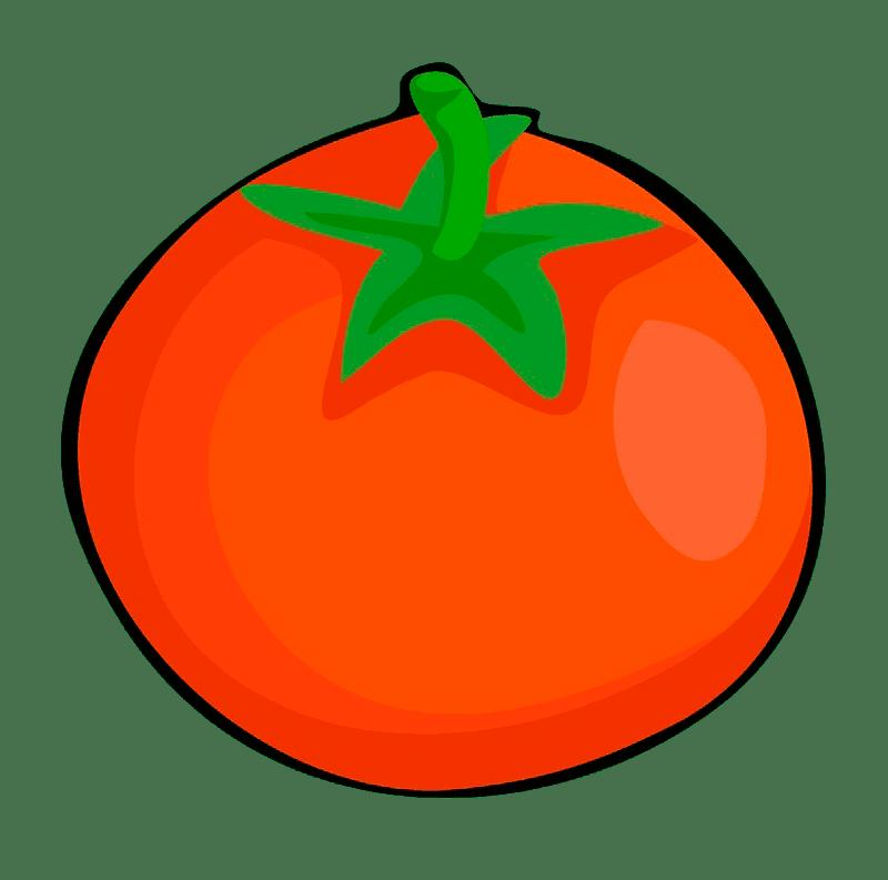 Tomato clipart transparent picture
