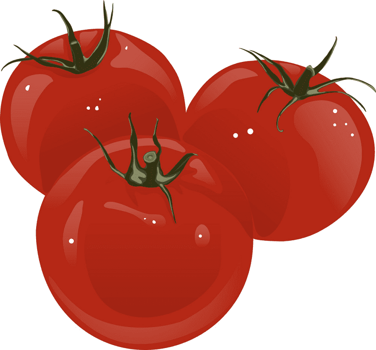 Tomatoes clipart download