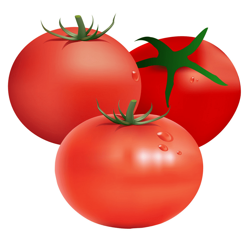 Tomatoes clipart images