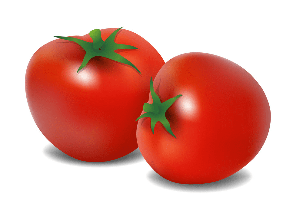 Tomatoes clipart png