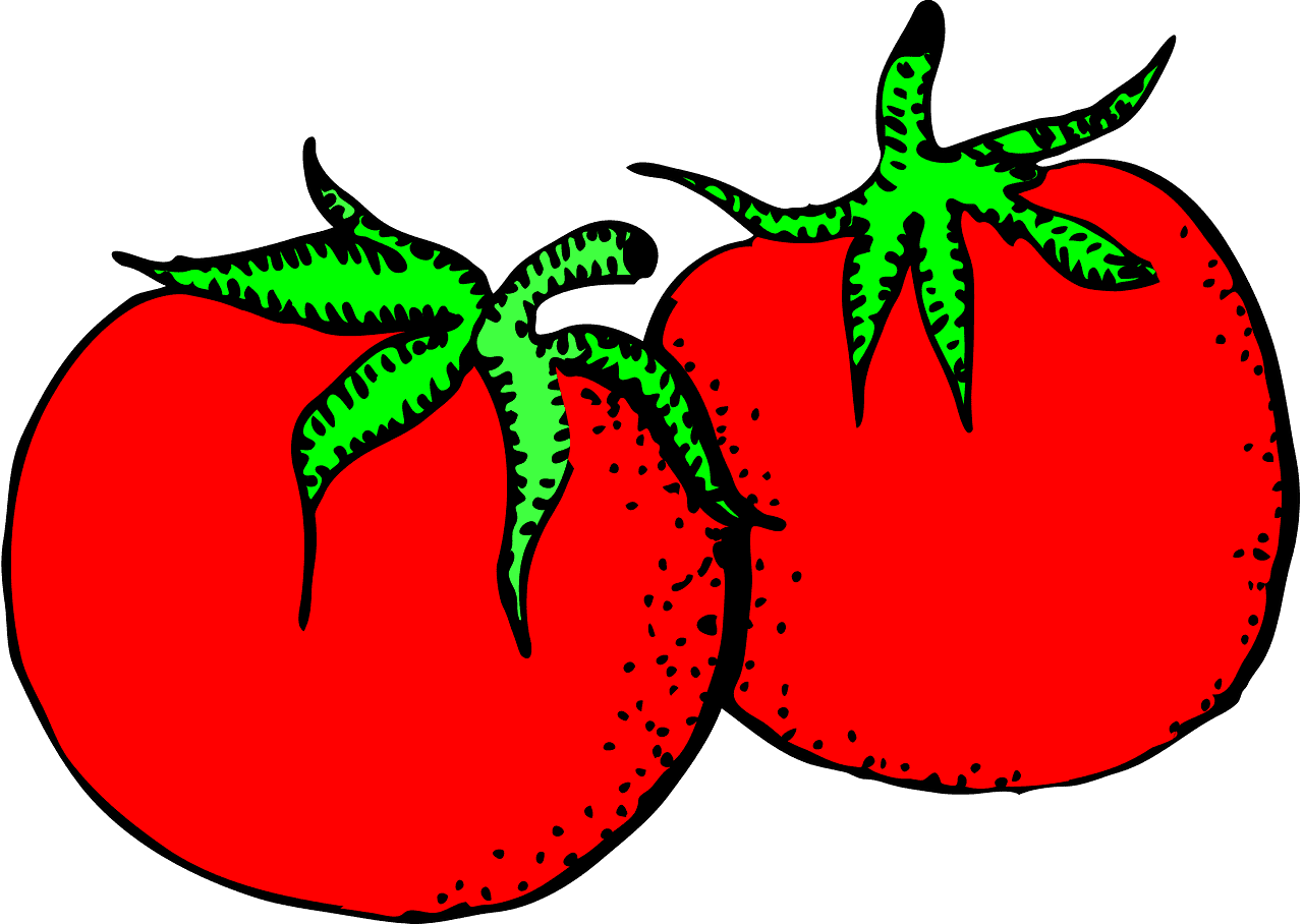 Tomatoes clipart transparent for kid
