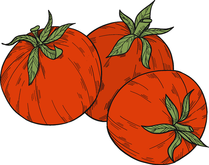 Tomatoes clipart transparent images