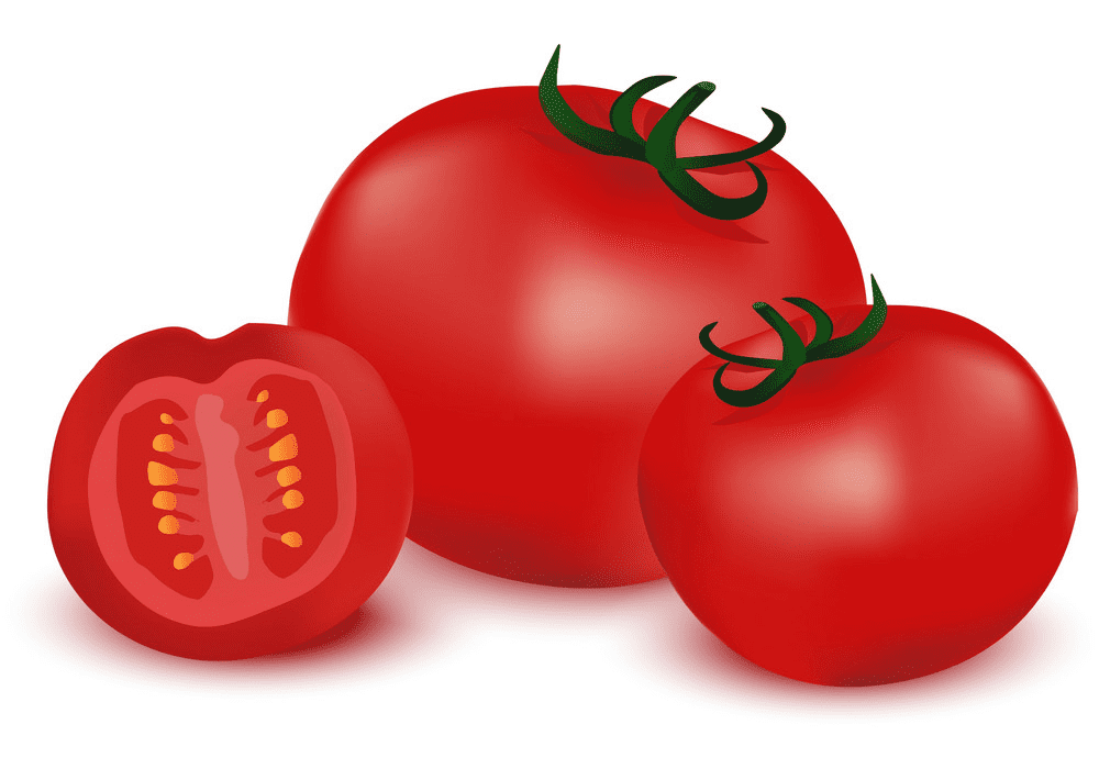 Tomatoes clipart