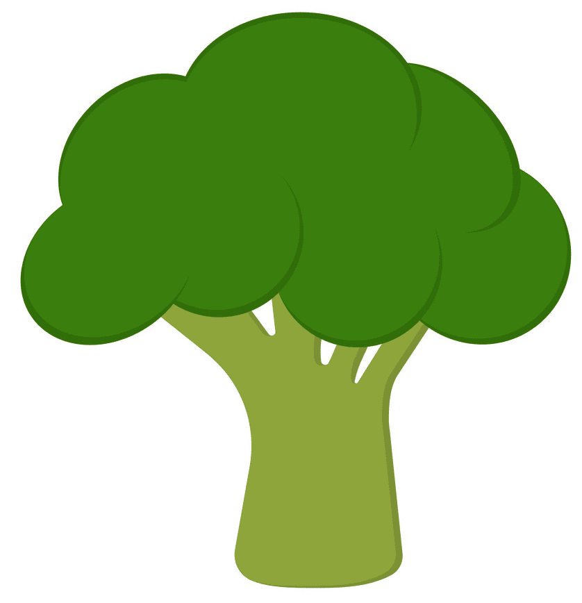 Broccoli clipart for kids