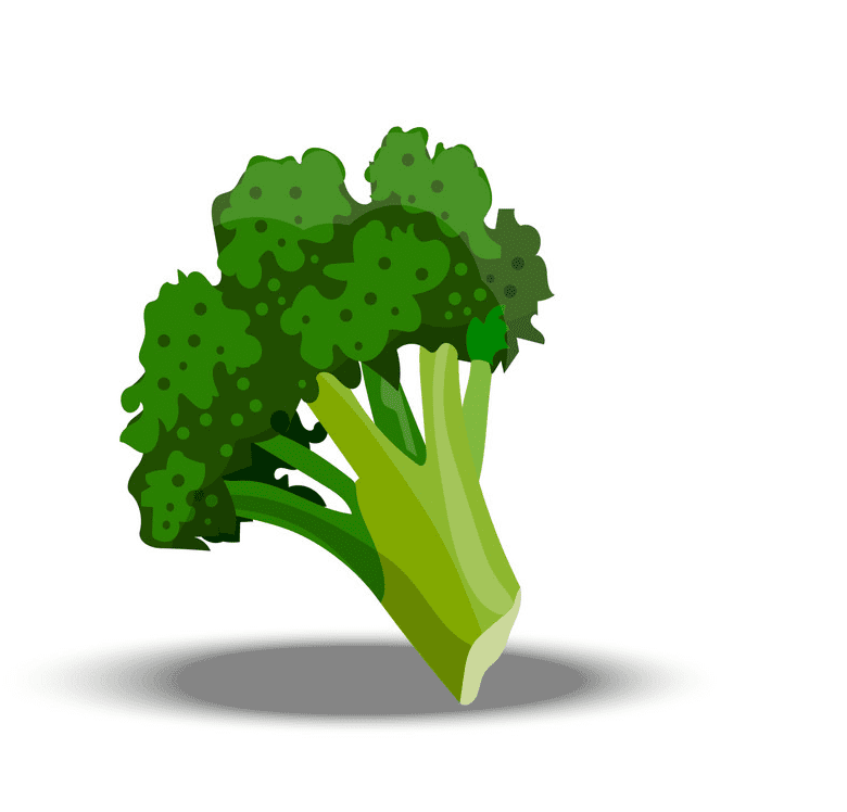 Broccoli clipart free for kid