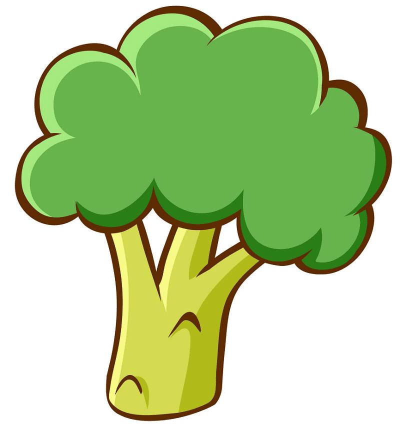 Broccoli clipart free image