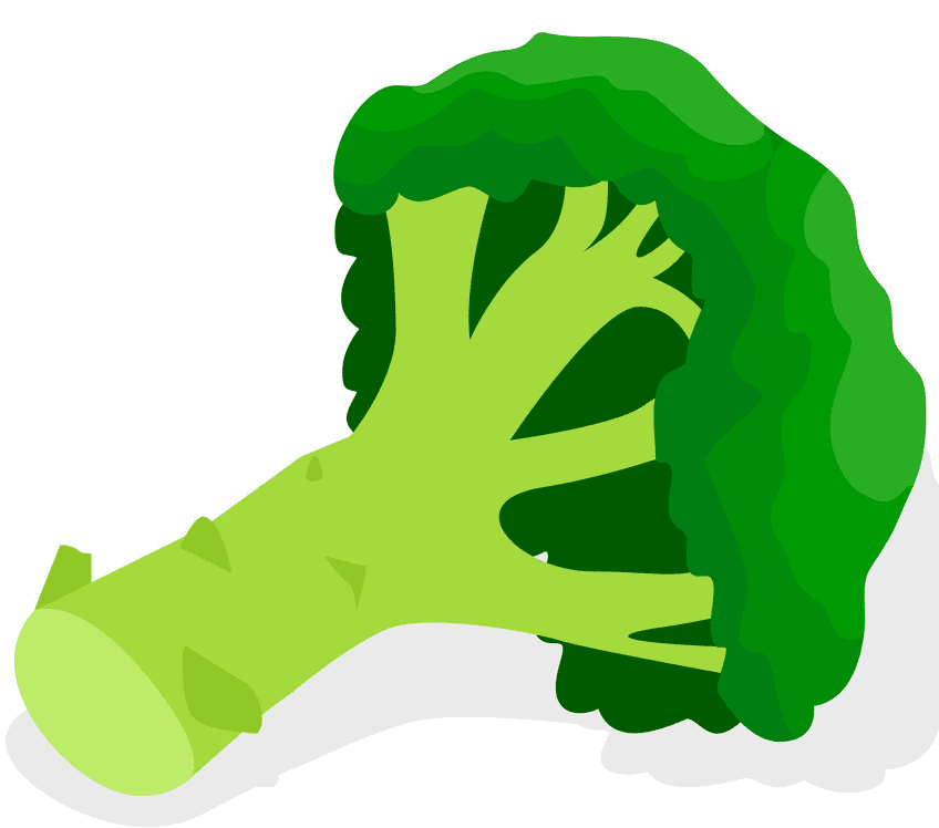 Broccoli clipart png for kid