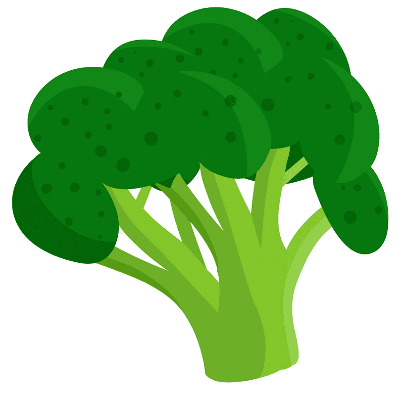 Broccoli clipart png images