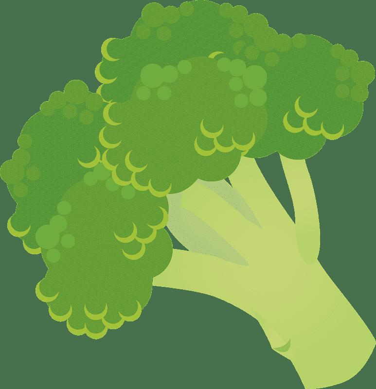 Broccoli clipart transparent 5