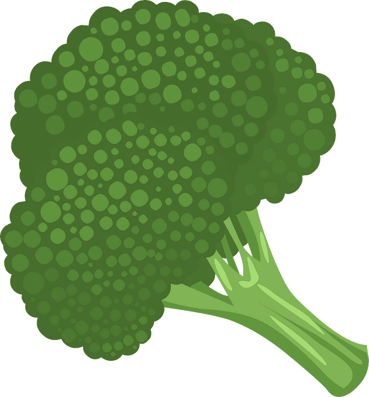 Broccoli clipart transparent download