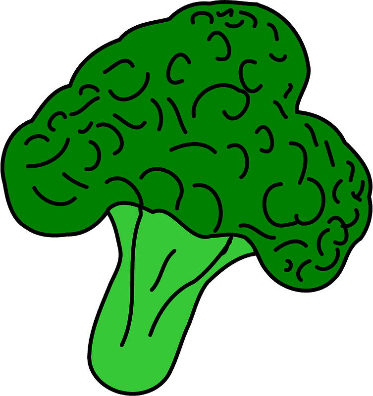 Broccoli clipart transparent for kid