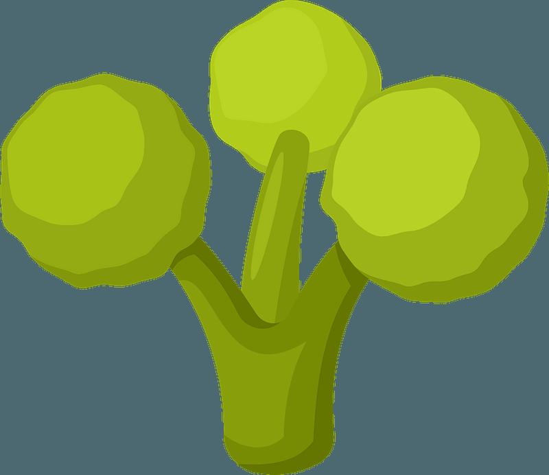Broccoli clipart transparent free
