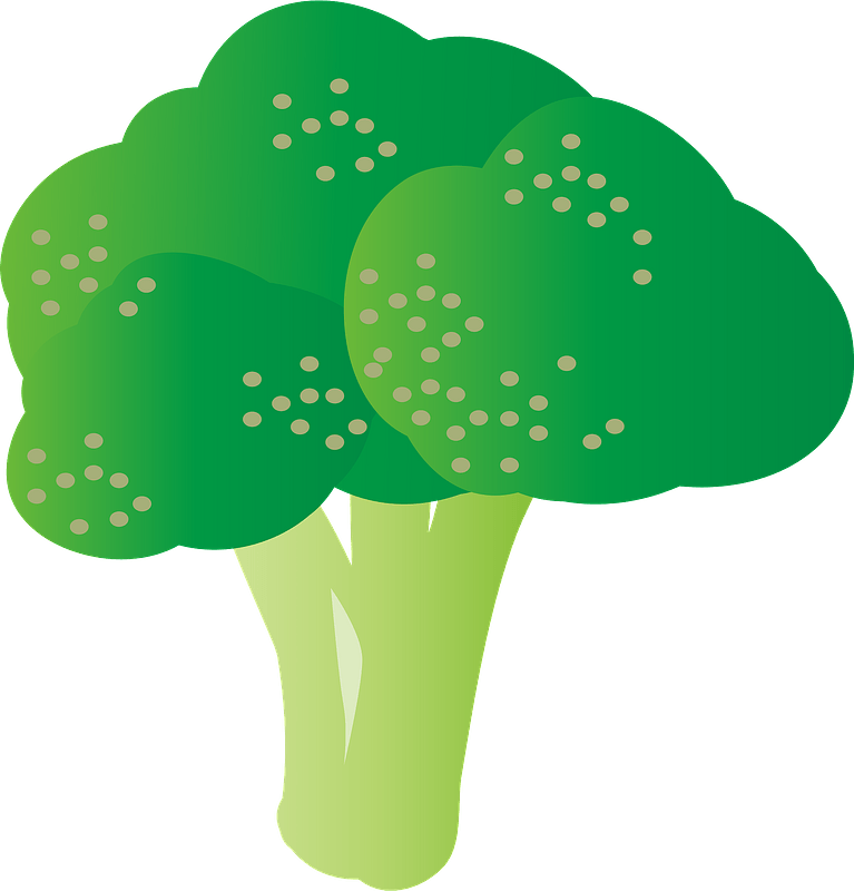 Broccoli clipart transparent image