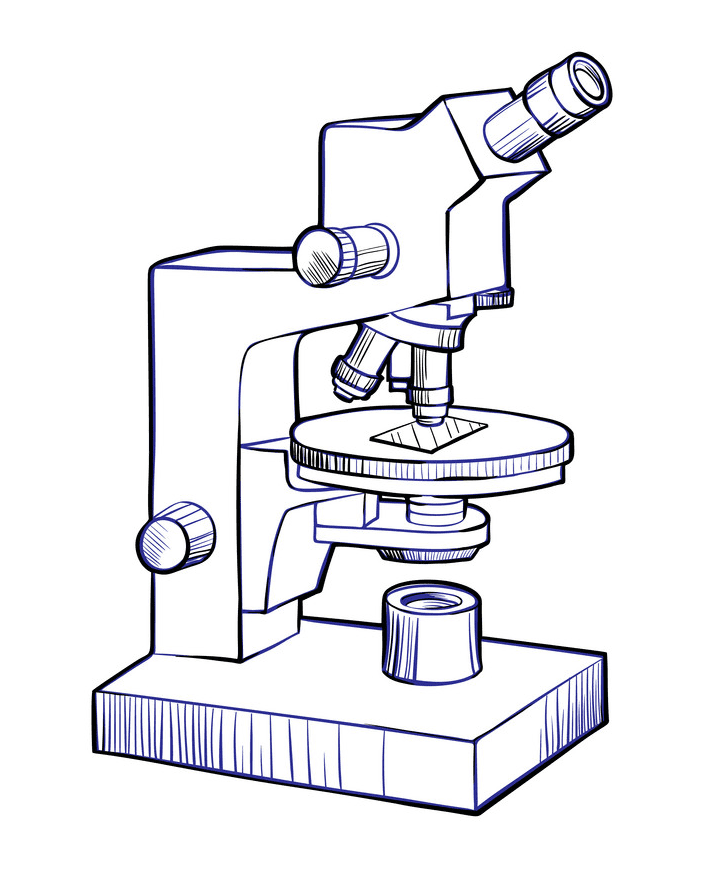Free Microscope clipart images