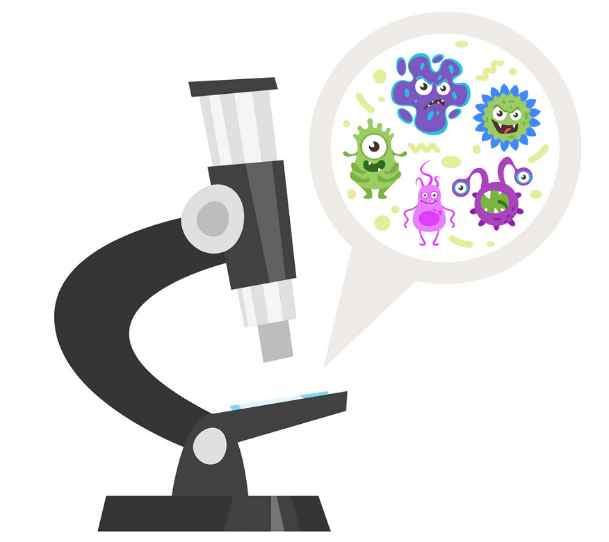 Microscope clipart for kid