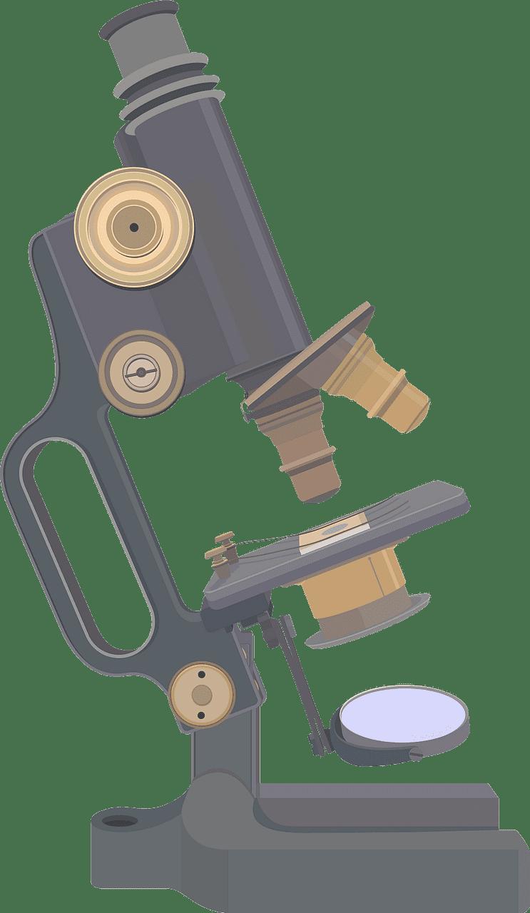 Microscope clipart transparent 8