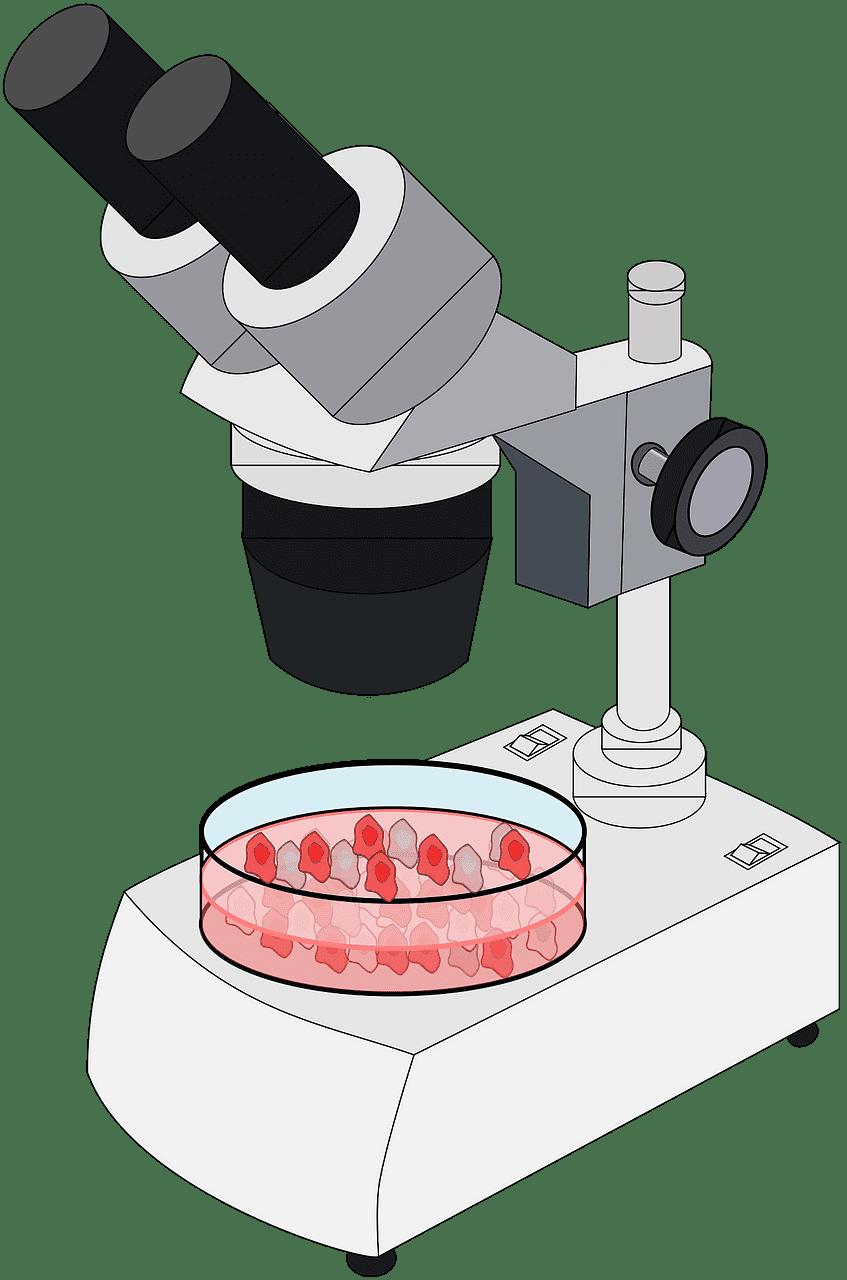 Microscope clipart transparent 9