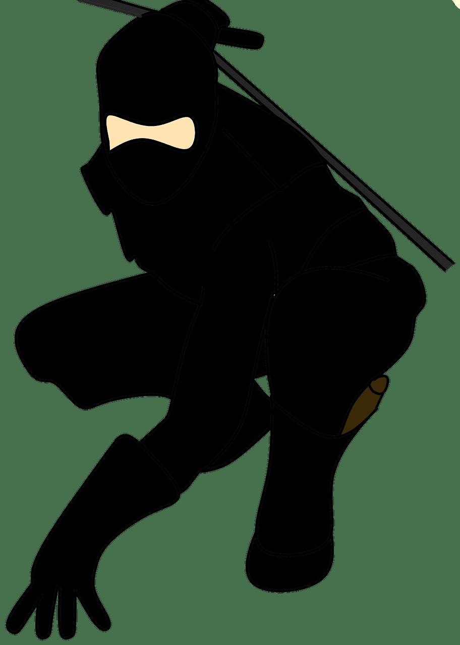 Ninja clipart transparent png