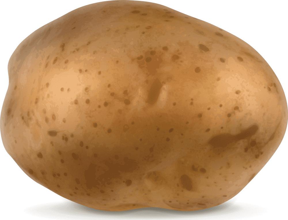 Potato clipart for free
