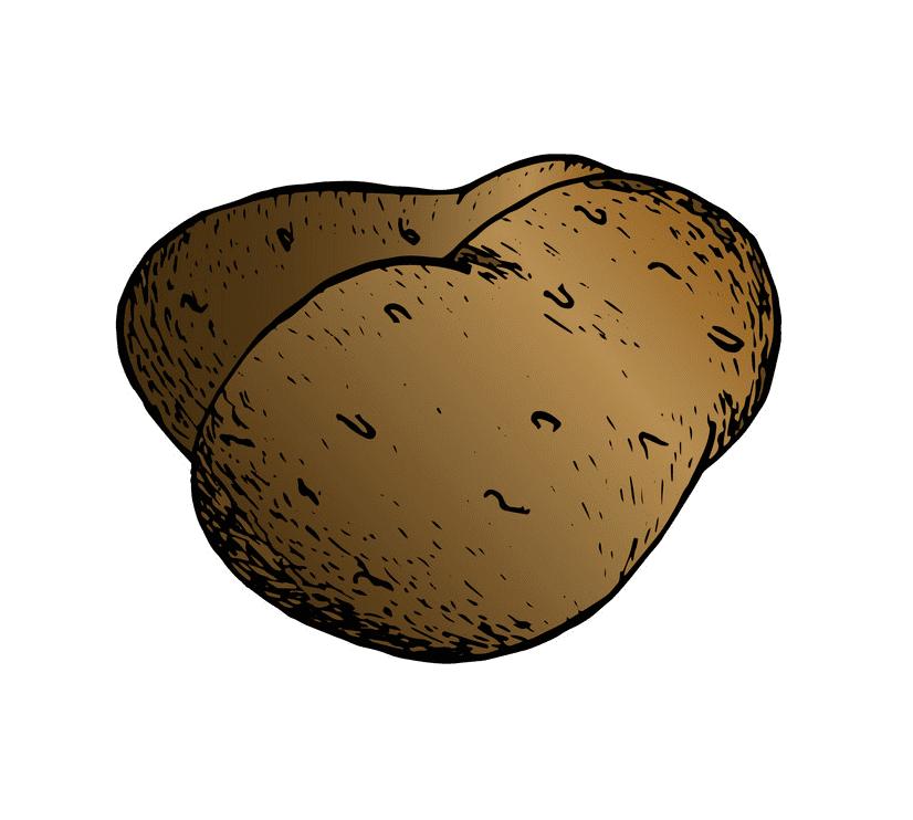 Potato clipart for kids