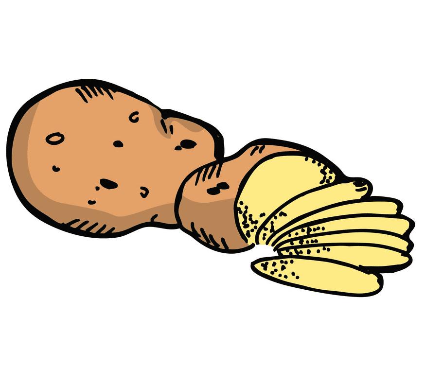 Potato clipart image