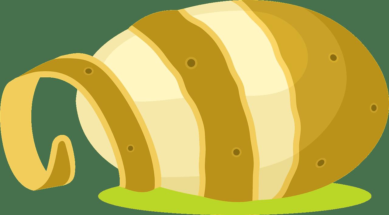 Potato clipart transparent 9