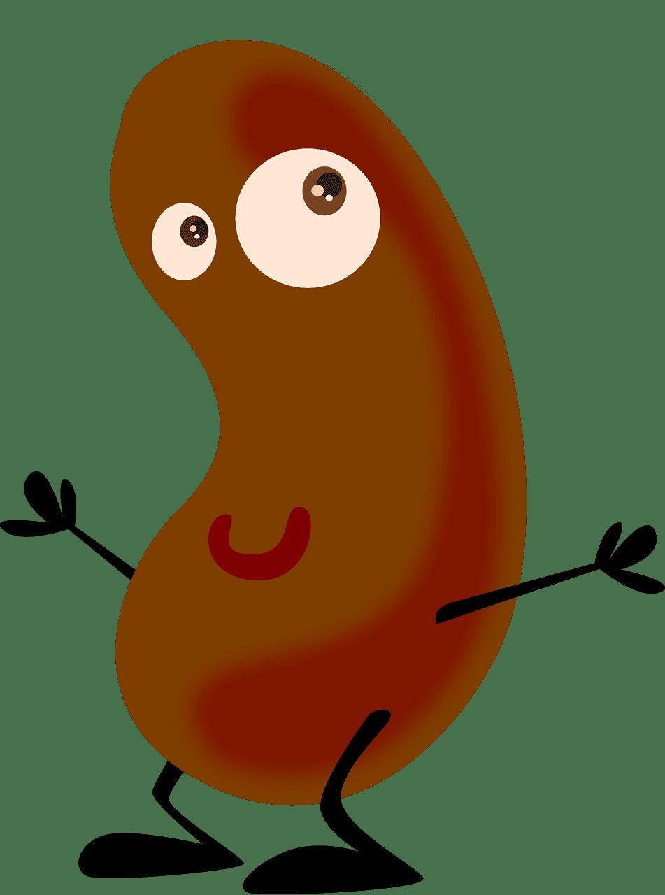 Potato clipart transparent picture