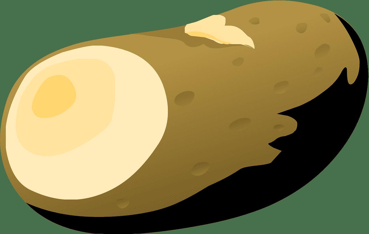 Potato clipart transparent png