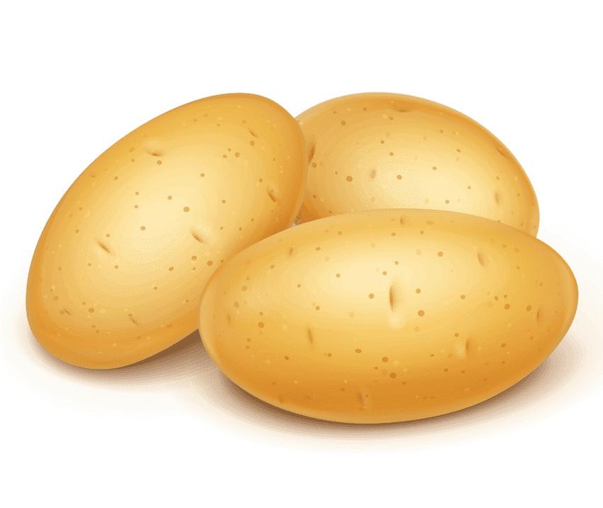 Potatoes clipart picture