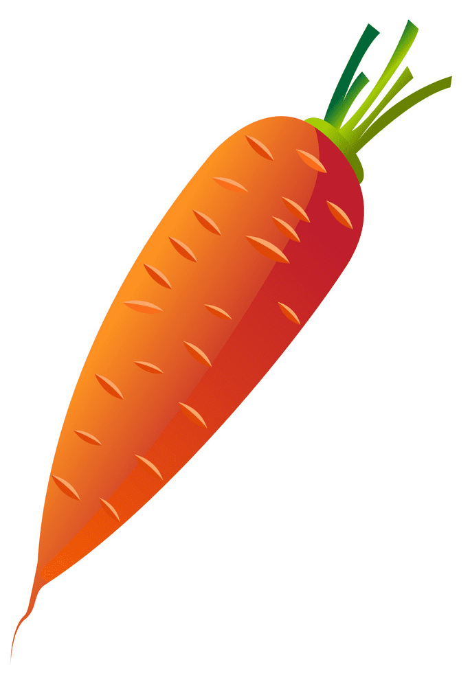 Carrot clipart png image