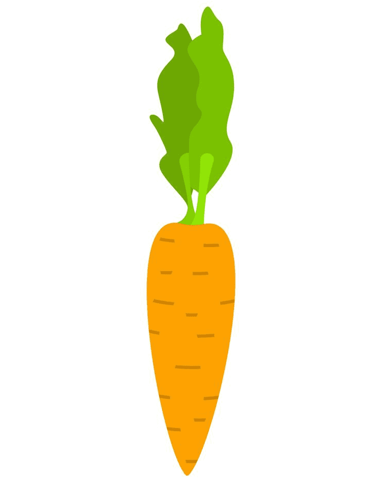 Carrot clipart png images